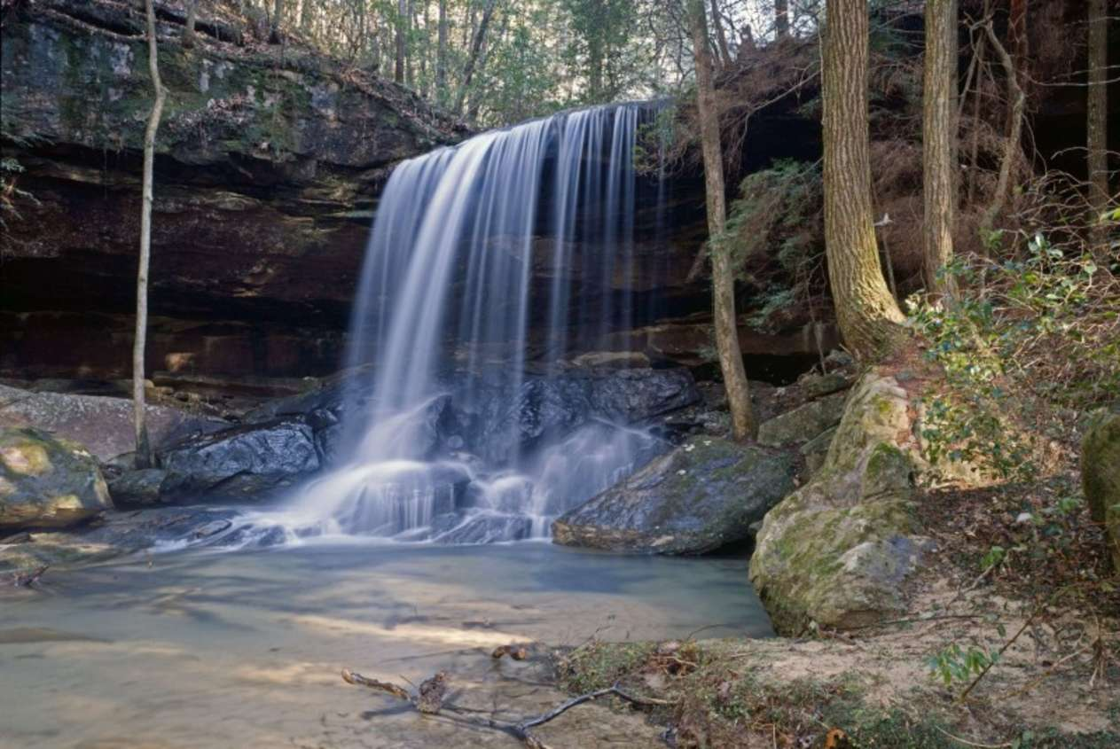 Scenic North Alabama Motorcycle Route-Bankhead National Forest