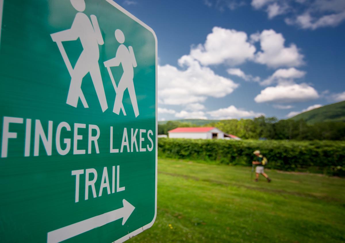 Copy of Finger Lakes Trail Hammondsport DSC2335