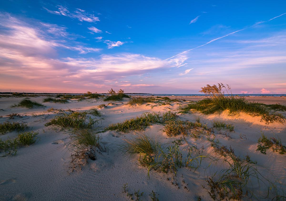 Pink clouds light up the sky over a stretch of sandy beach dotted with patches of beach grass.