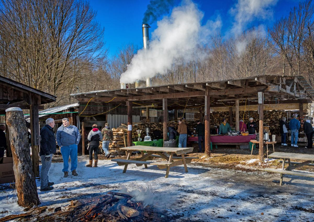 Baer Brothers Maple Camp