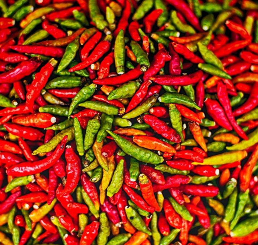 Fiery Foods Chile