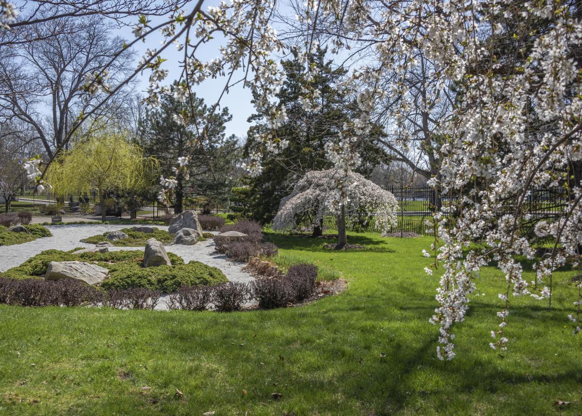 Shiojiri Niwa Japanese Gardens in Mishawaka