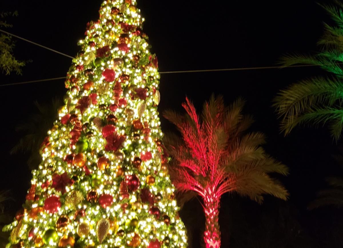 Ritz-Carlton Rancho Mirage_Christmas Tree