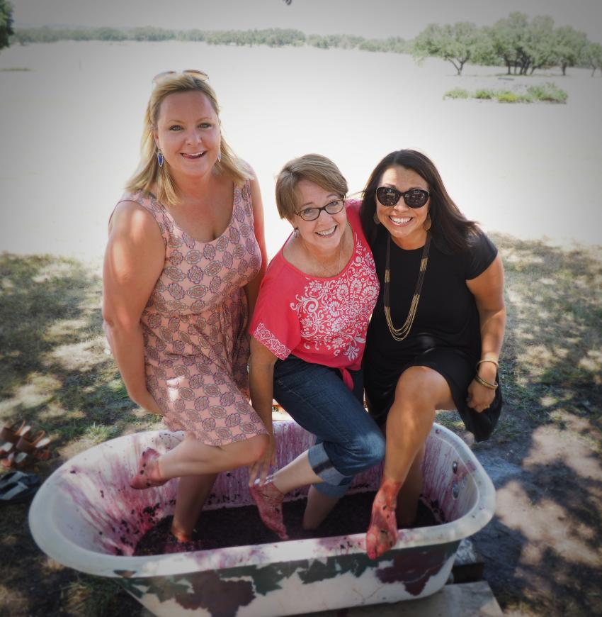 Several area wineries host grape stomps