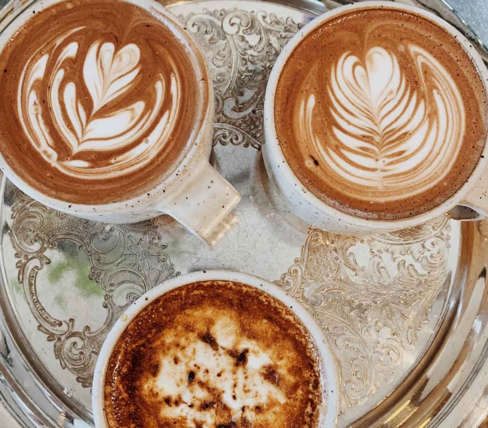 Little Lion Coffee in Wichita