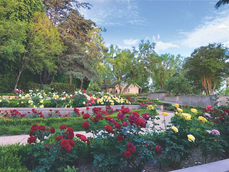 nixon-library-gardens
