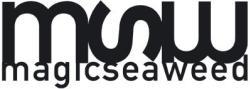Magicseaweed Surf Resource