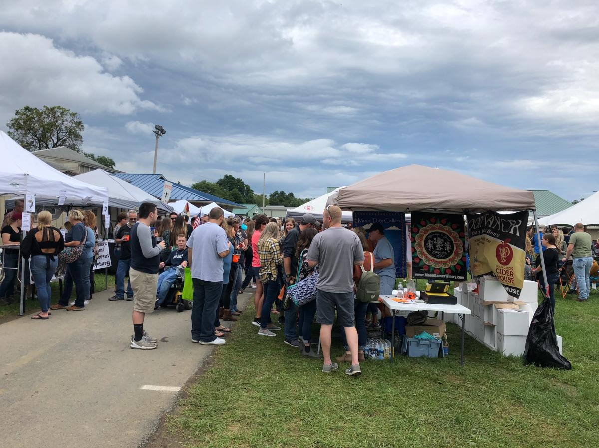 People visiting the vendors at Jam in the Park