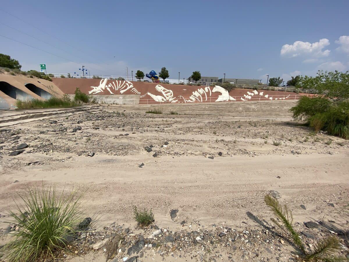 Calabacillas Arroyo Artificial Fossils