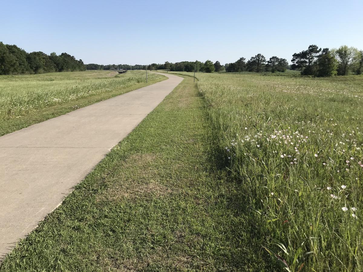 hike and bike trail - gulf terrace