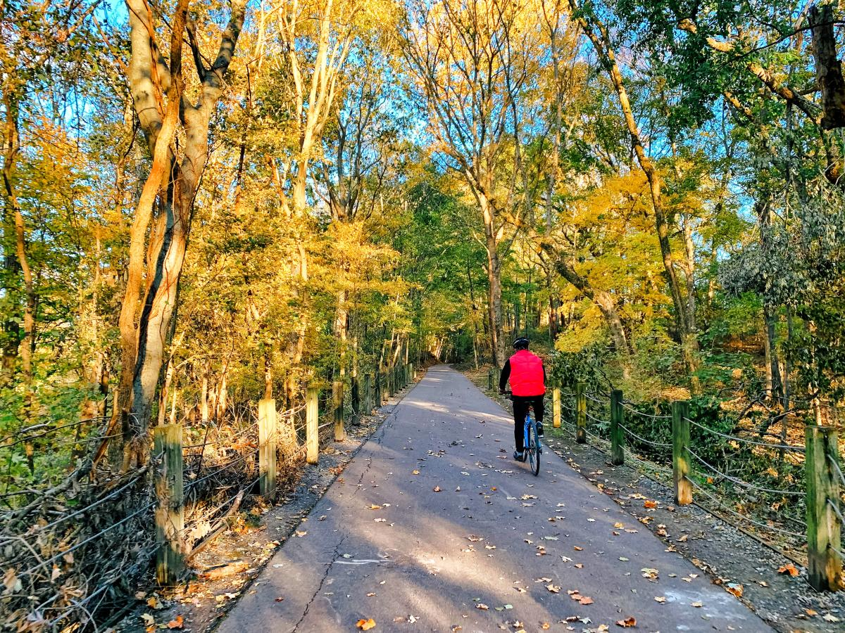 cyclist along the greenway during fall