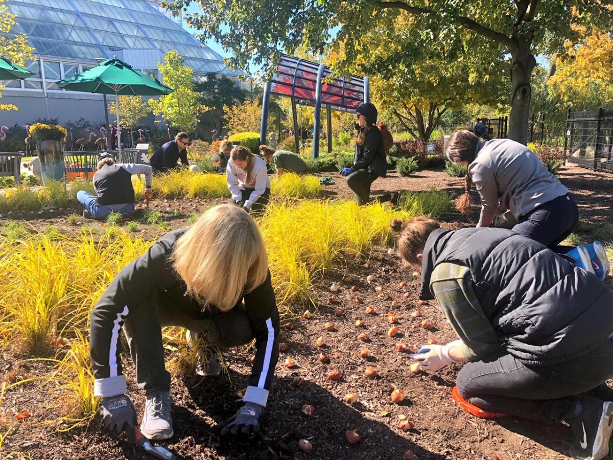 Volunteer in Columbus - Franklin Park Conservatory