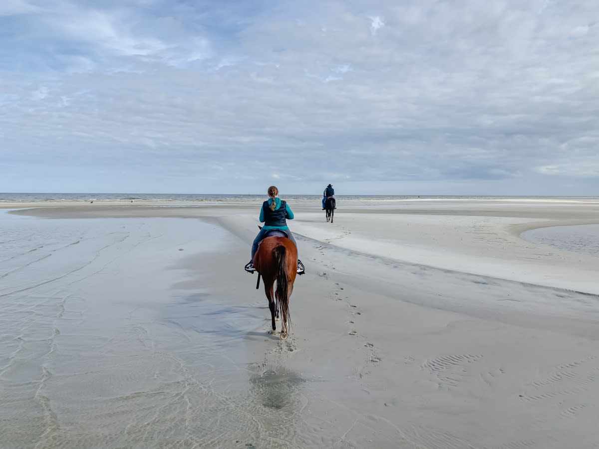 Travelers enjoy Horseback Riding along the water's edge on Cedar Island.