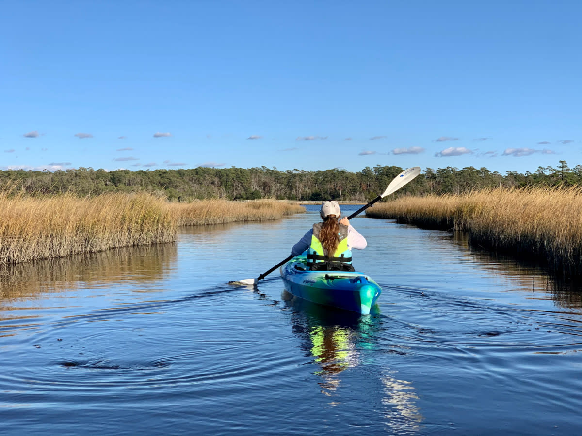 A visitor explores the waters of the Croatan National Forest on a kayak,