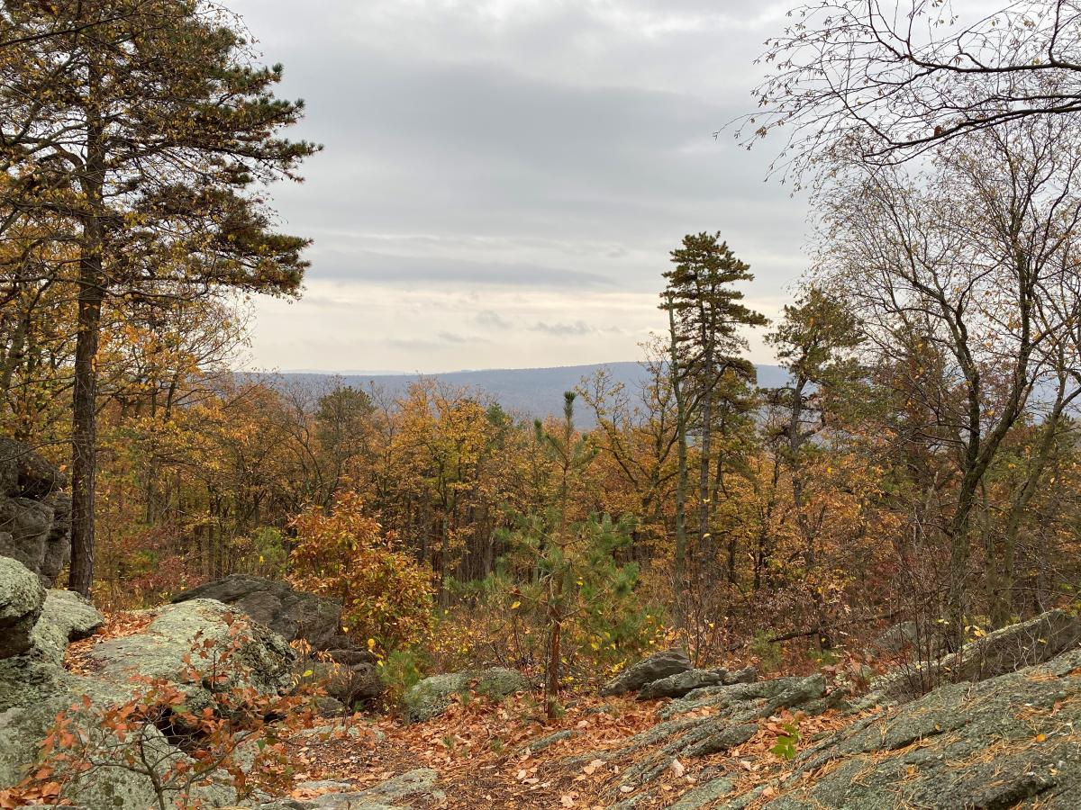 Fall landscape and rocks at Hammonds Rocks