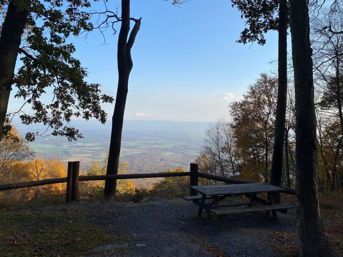 Picnic table area along Three Square Hollow Overlook