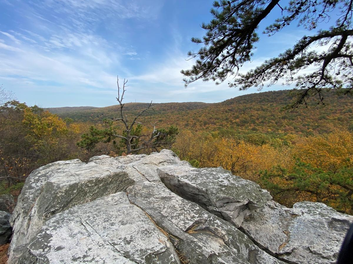 Rock and fall landscape at White Rocks Trail