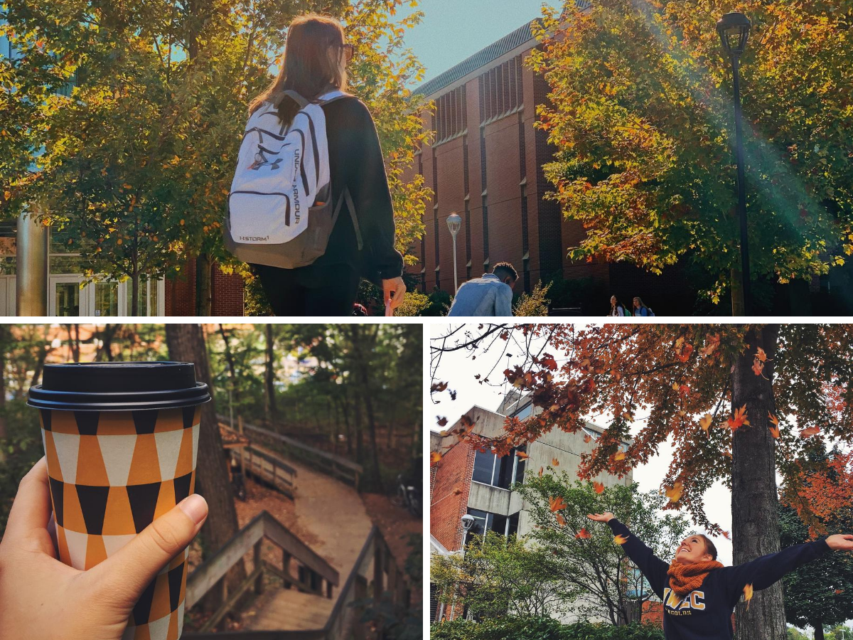 Different scenes of fall at UW-Eau Claire