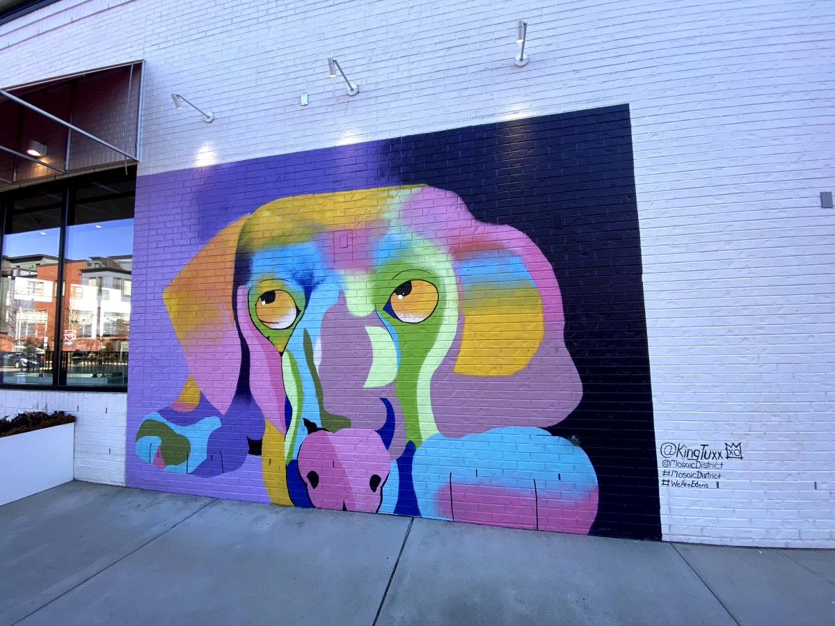 Mosaic District Dog Mural