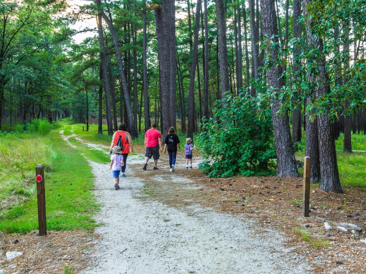 Carvers Creek State Park Walking
