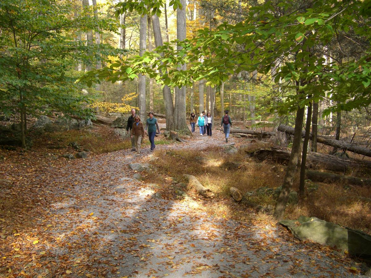 Hikers in Cunningham Falls State Park in the fall