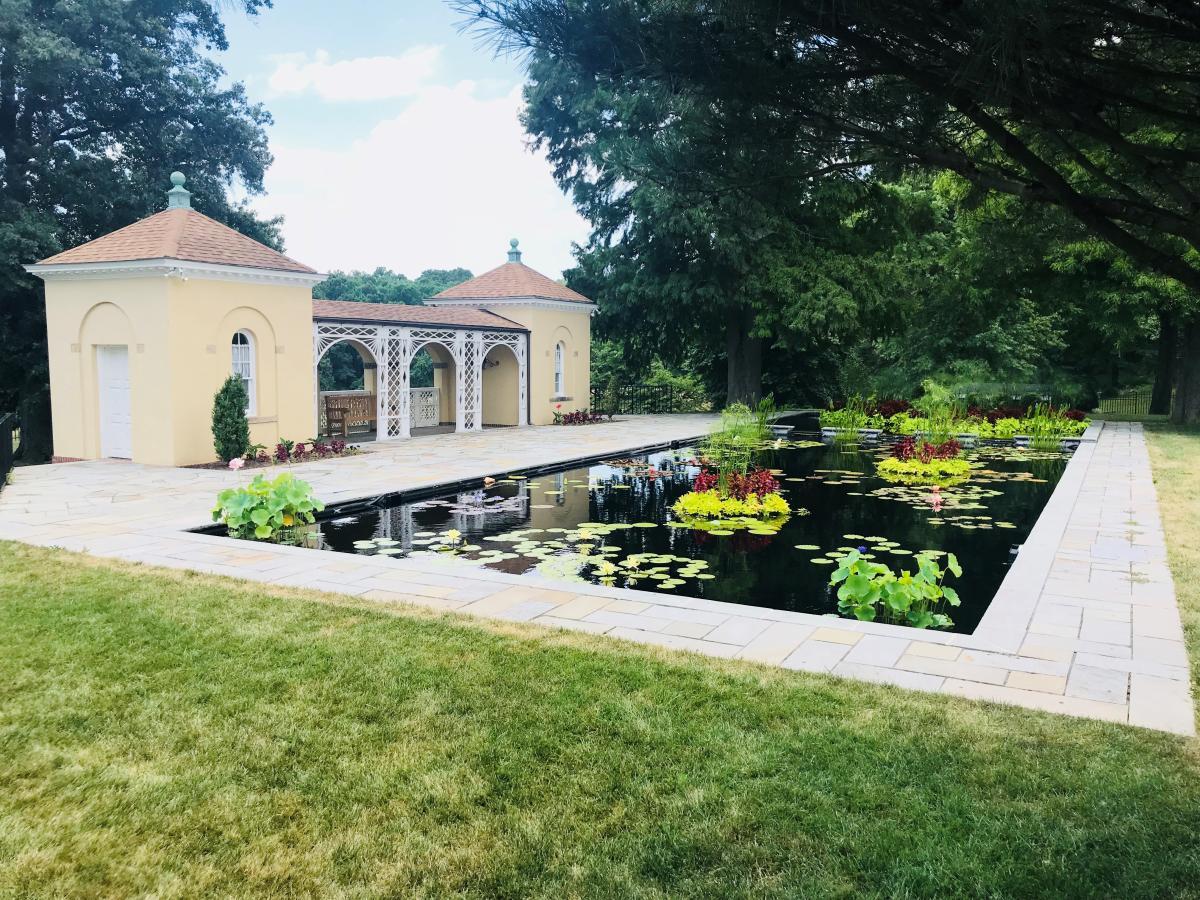 Belmont Manor Pond