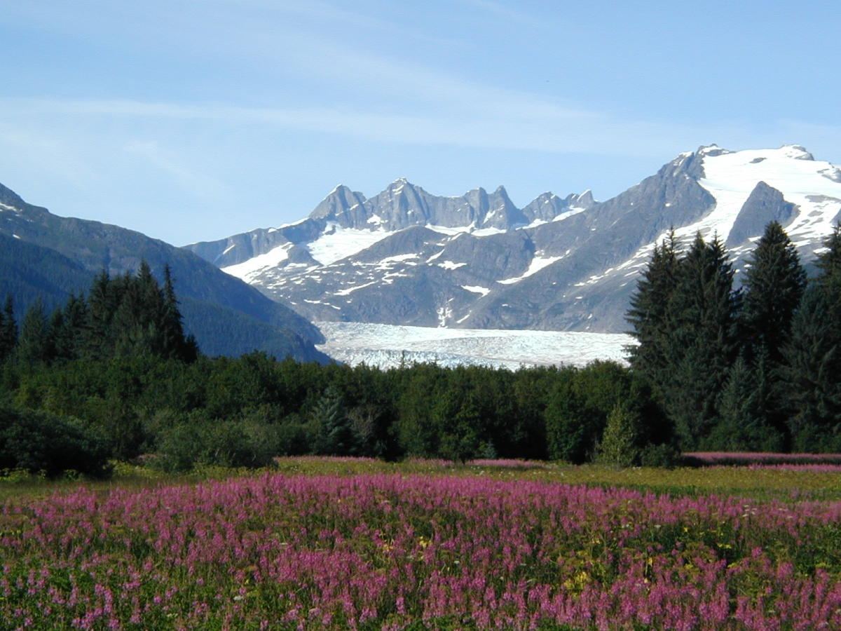 Mendenhall Glacier Alaska Shore Excursions