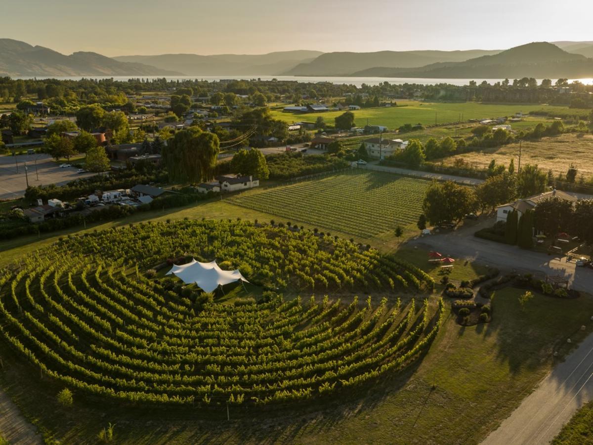 Sperling Winery