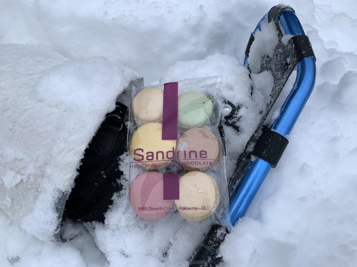 Sandrine Macaron Sampler Pack in Snow with Snowshoes