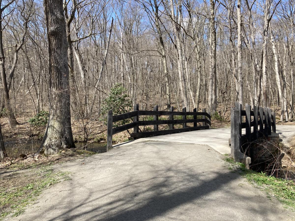 Copper Kettle Trail bridge, Laurel Hill State Park