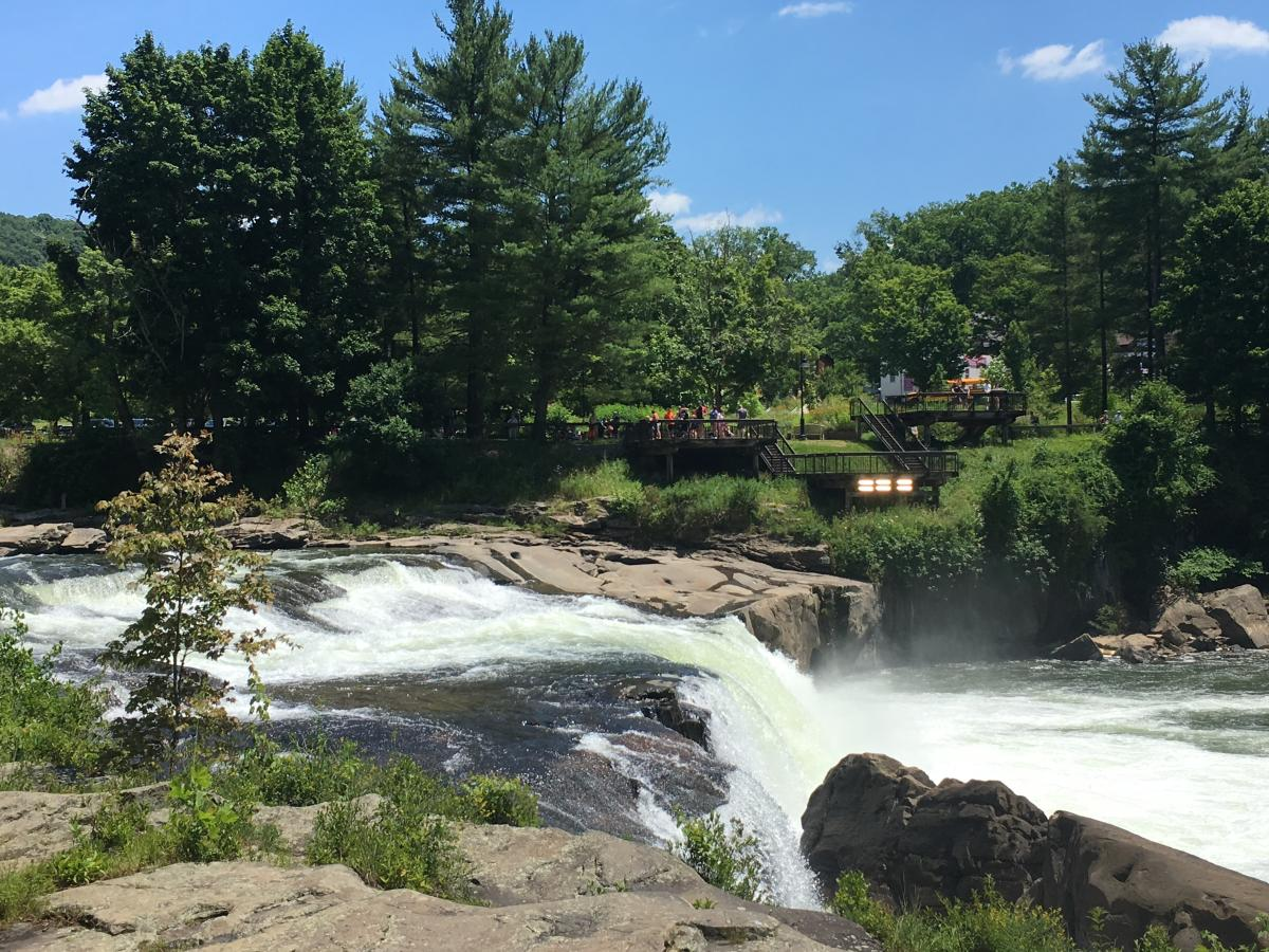 View of Ohiopyle Falls from Ferncliff Trail, Ohiopyle State Park