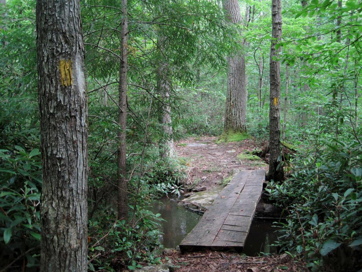 Laurel Highlands Hiking Trail