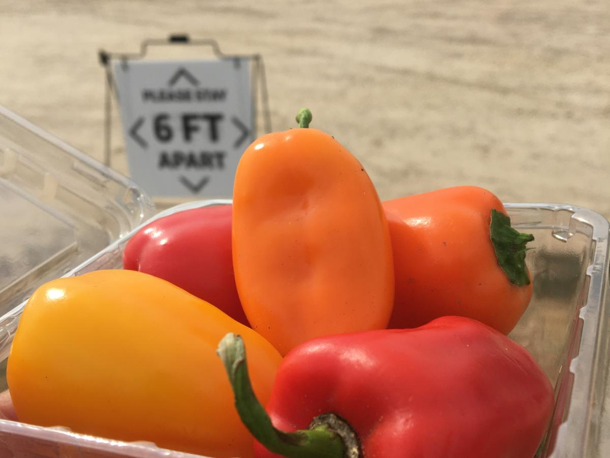 A variety of peppers in a plastic container at  the farmers' market