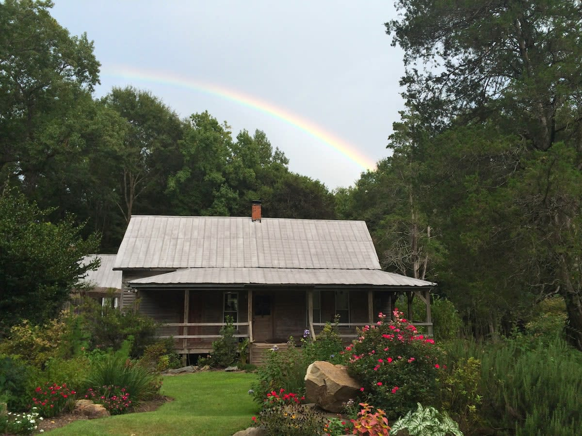Nature's Nest Vacation Rental