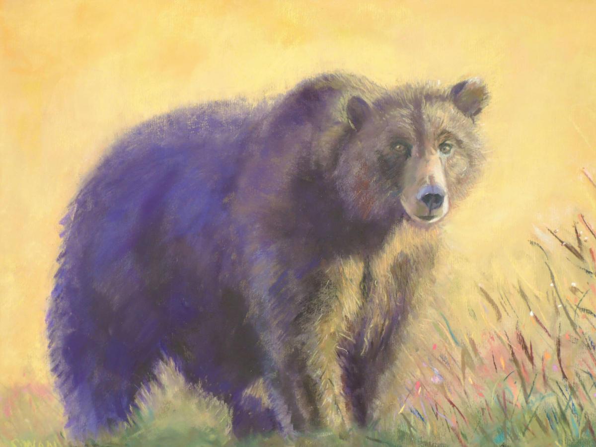 Grizzly painting by Dinah Swan