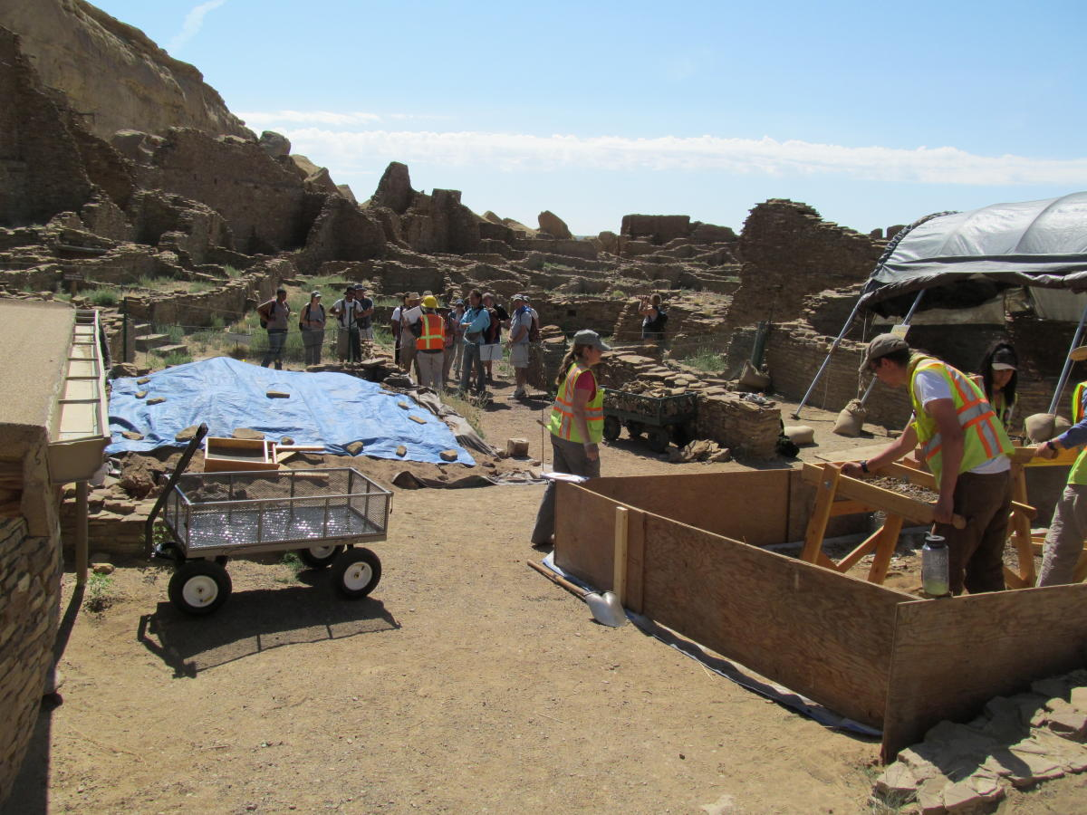 Patricia L. Crown's research team spent six weeks digging and sifting.