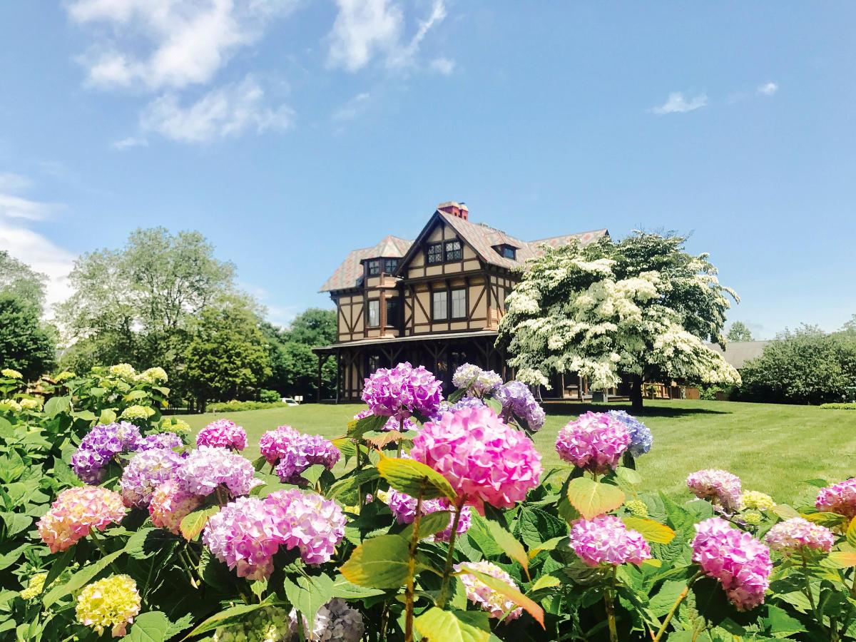 Newport Art Museum Spring