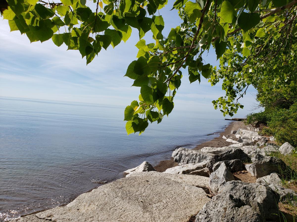Carol Beach Shoreline looking South