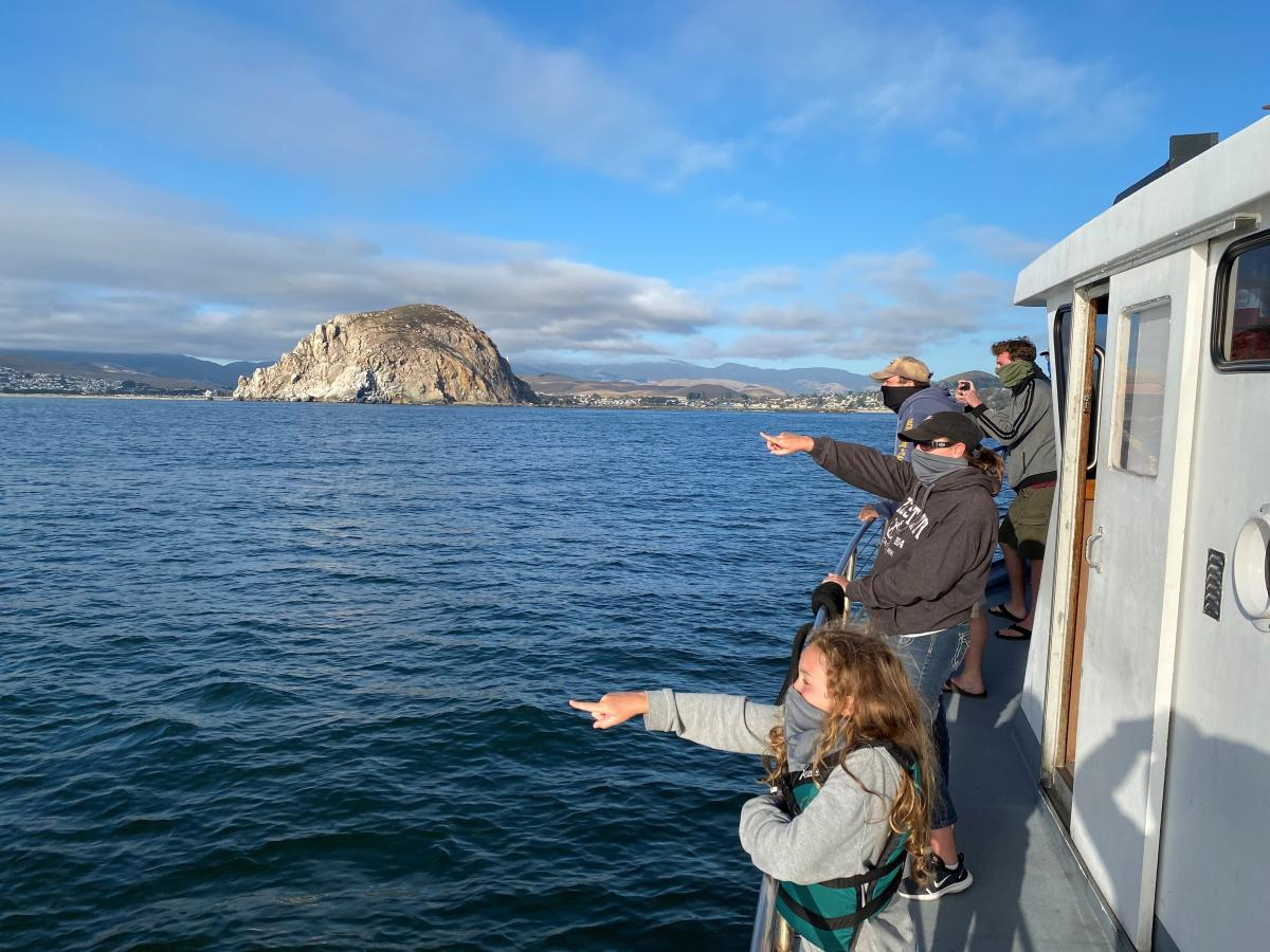 People pointing while whale watching in Morro Bay