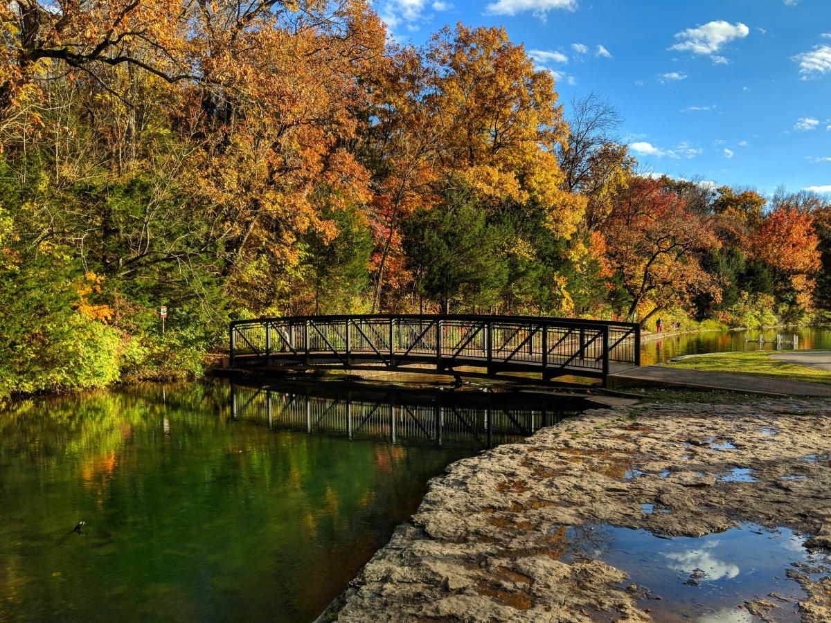 Sequiota Park in the fall