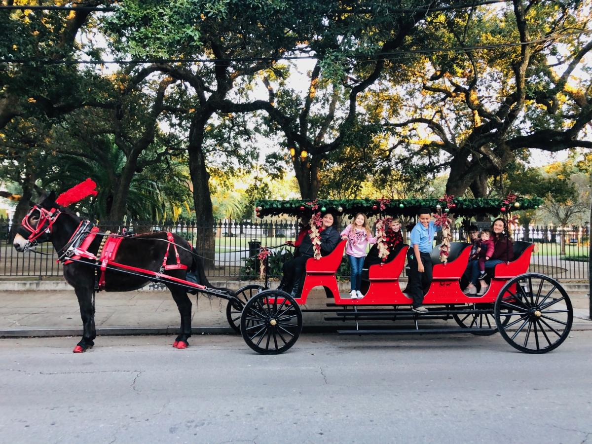 Royal Carriages tours, decked out for the holidays