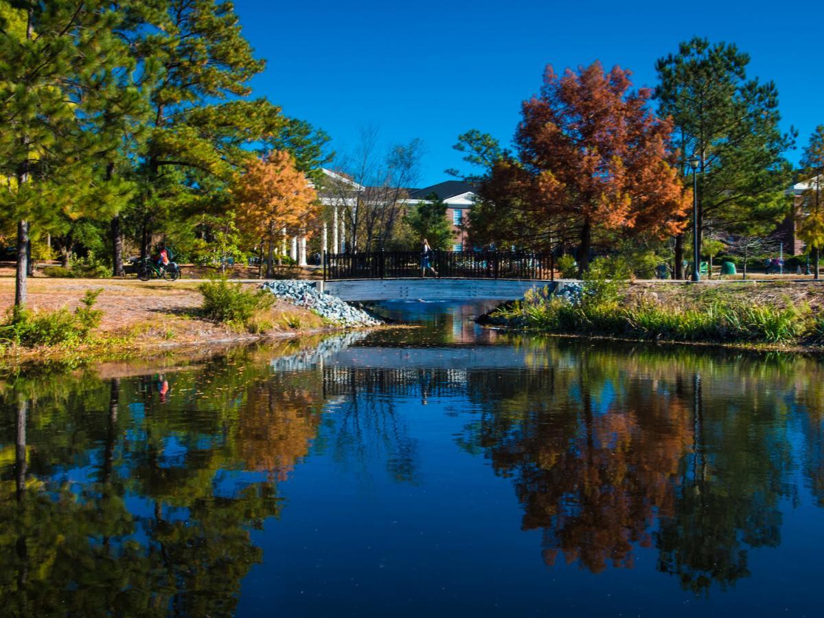 University North Carolina Wilmington (UNCW) Campus in Autumn