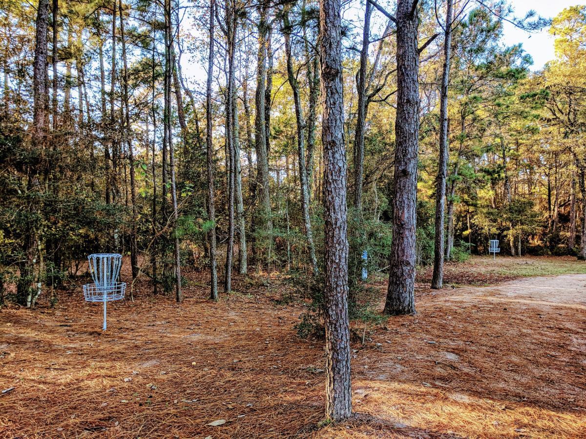 Bear Branch Disc Golf