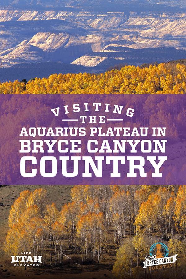Aquarius-Plateau-Feb-2021-(Purple)