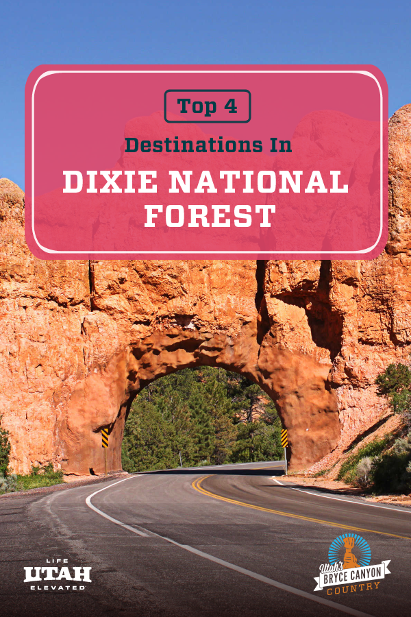 GREAT DESTINATIONS IN DIXIE NATIONAL FOREST PIN 1