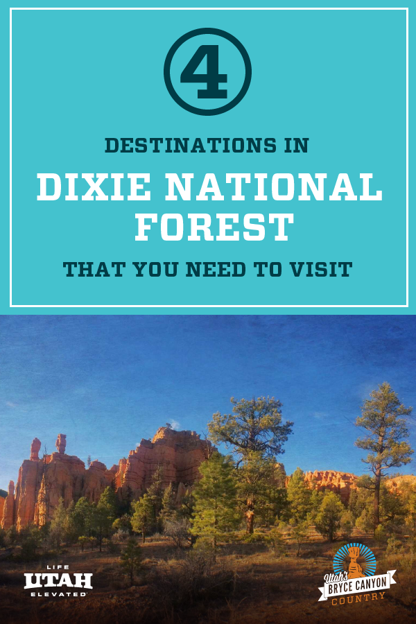 GREAT DESTINATIONS IN DIXIE NATIONAL FOREST PIN 3