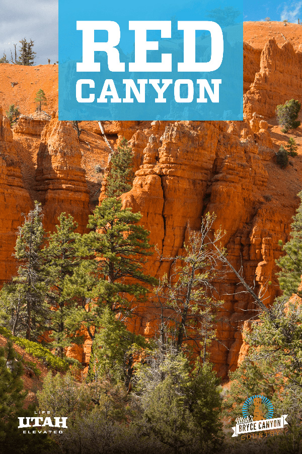 Red Canyon Blue