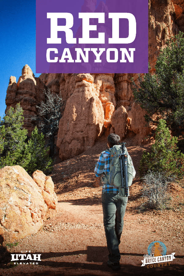 Red Canyon Purple