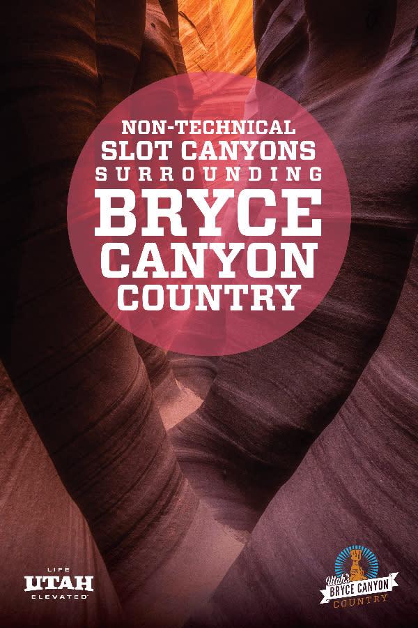 Slot Canyons Pink