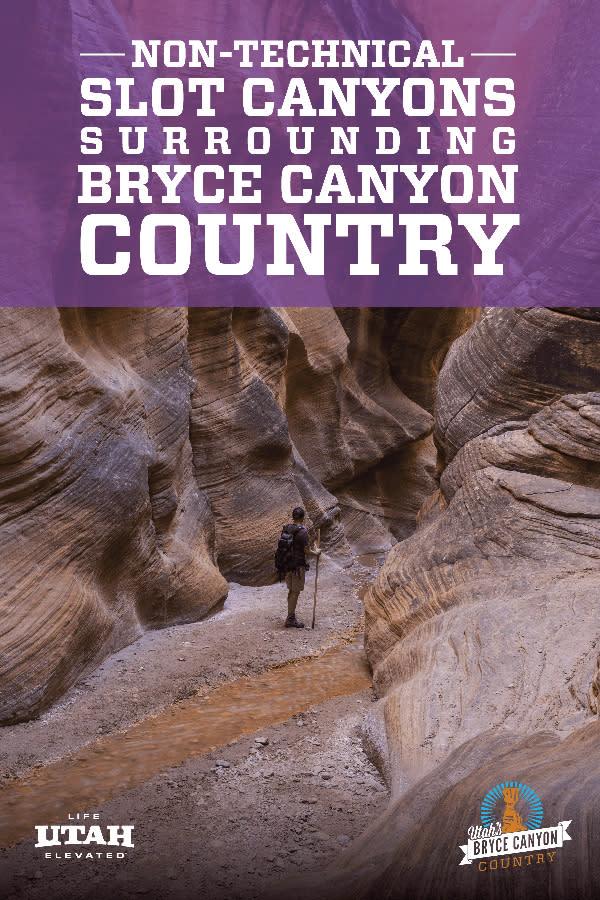 Slot Canyons Purple